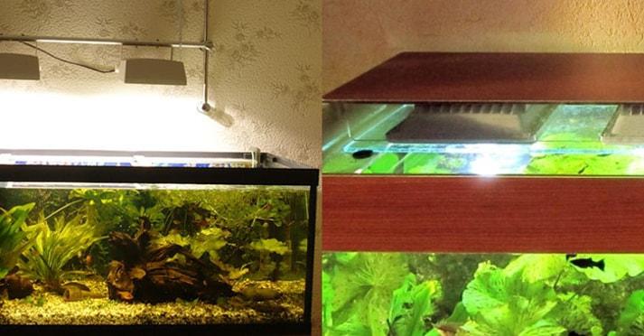 Освещение аквариума светодиодными лампами и прожекторами