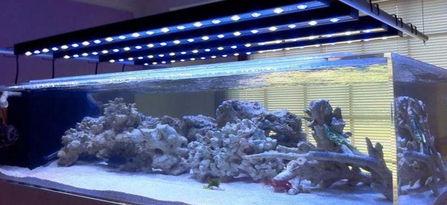 Освещение в аквариуме на 200 литров своими руками