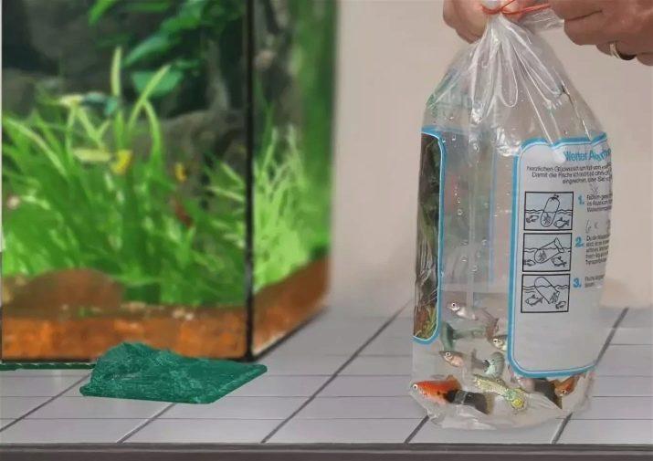 Использование химических очистителей