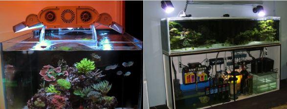 Как самостоятельно установить аквариум дома